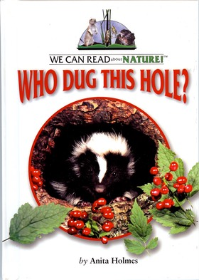 Who Dug This Hole? cover